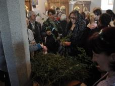 13 Св. Литургија на Цвијети у Мостару