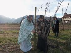 5 Прослављен празник Светог Трифуна у Петропавловом Манастиру