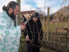 6 Прослављен празник Светог Трифуна у Петропавловом Манастиру
